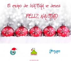El equipo de Inatega te desea Feliz Navidad